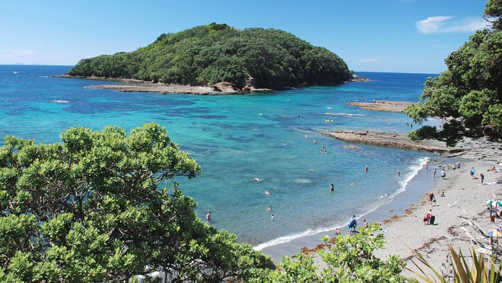 Five day trips from Auckland
