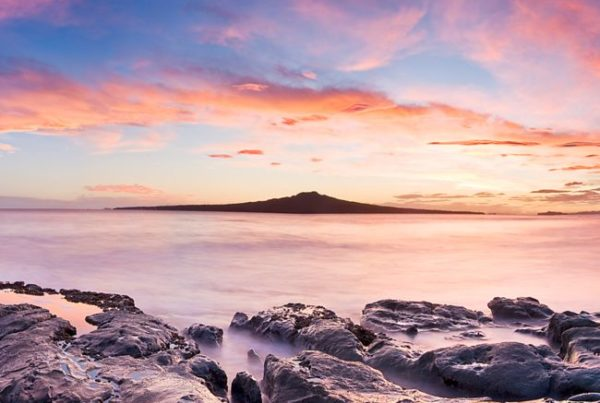 Experience: Five day trips from Auckland